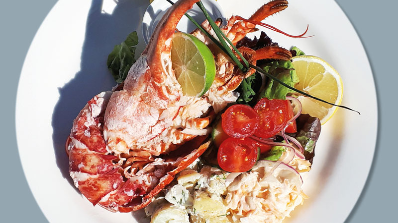 Lobster salad for £17.50 – how snappy is that?